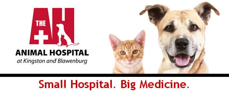 Animal Hospital at Kingston & Blawenburg